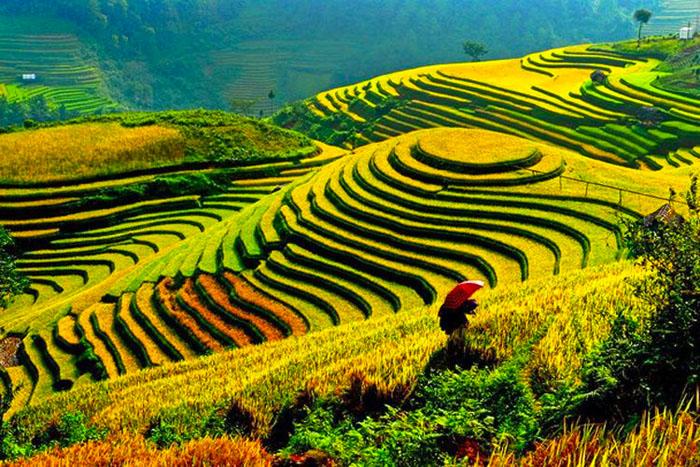 landlig ferie i vietnam
